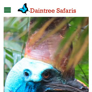 Daintree Safaris mobile view